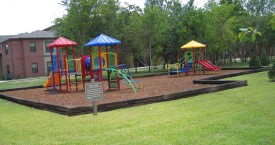 Play Ground Area